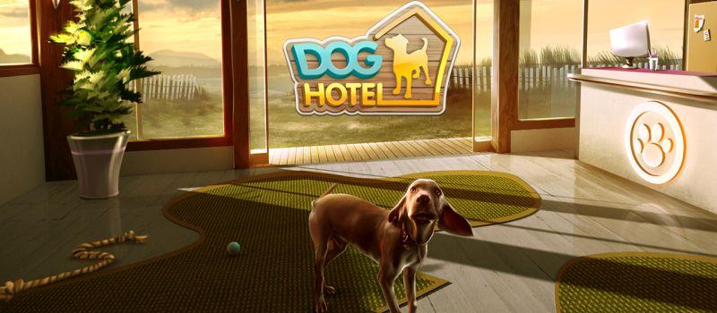 doghotel tips