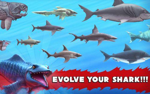 hungry shark evolution guide