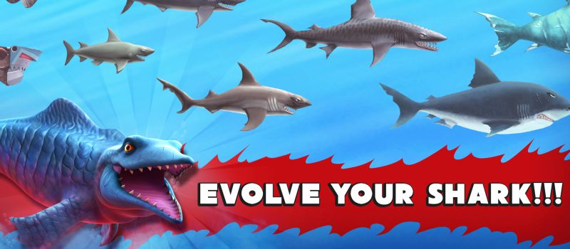 hungry shark evolution guide