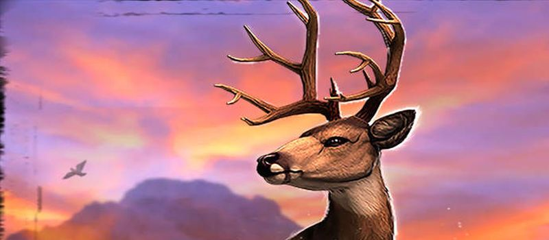 deer hunter 2016 tips