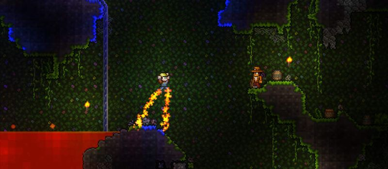 terraria unlimited cash