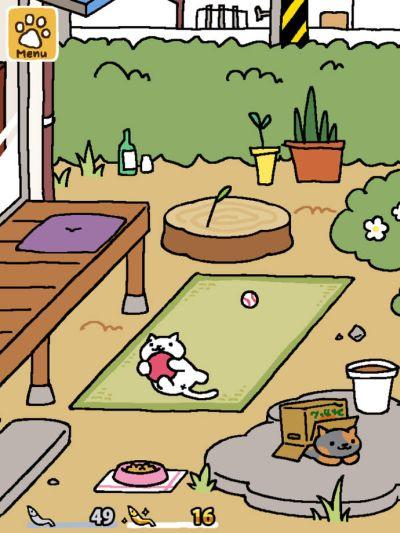 neko atsume kitty collector tips