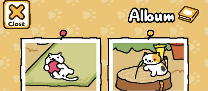 neko atsume kitty collector how to get rate cats