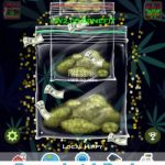 Weed Boss 2 Tips, Tricks & Cheats to Earn More Money