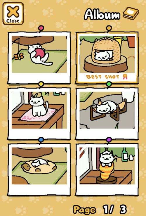 how to feed cats in neko atsume kitty collector