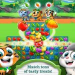 Hungry Pets Mania Cheats, Tips & Tricks to Complete More Levels