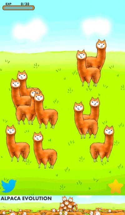 alpaca evolution tips