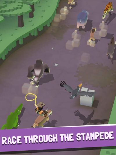 rodeo stampede guide