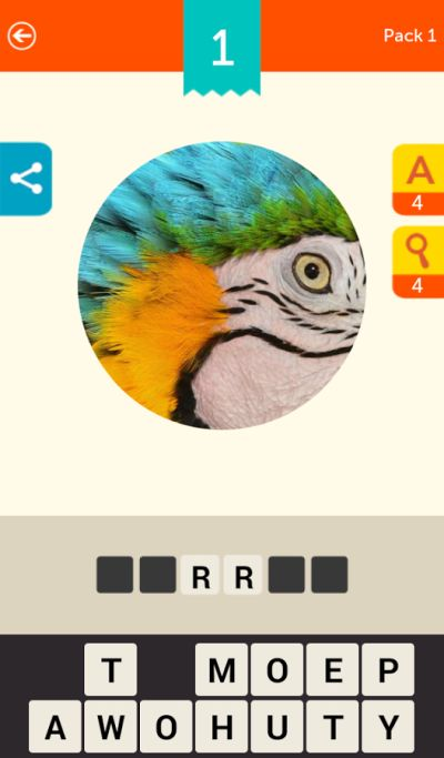 what's the phot answers