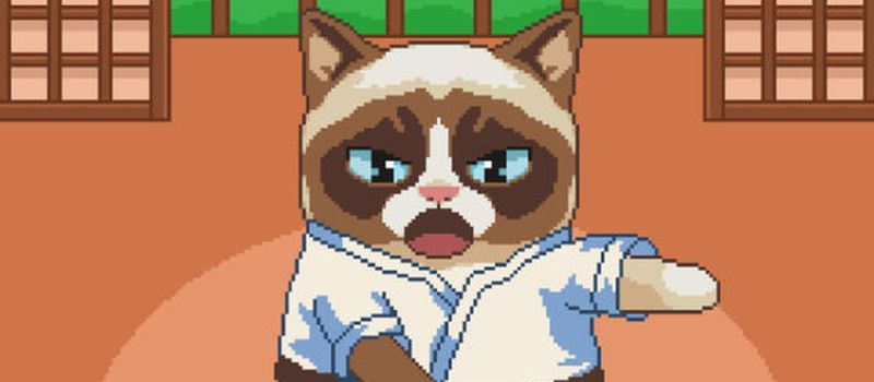 grumpy cat's worst game ever cheats