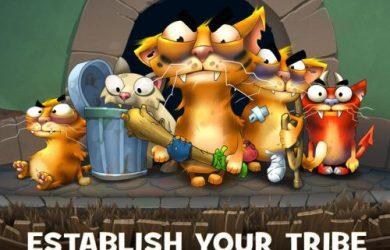 cats empire clash of cats tips