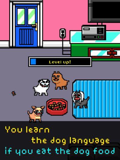i became a dog tips