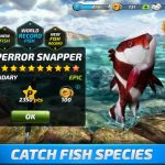 Fishing Clash Cheats, Tips & Guide: How to Catch Rare Fish
