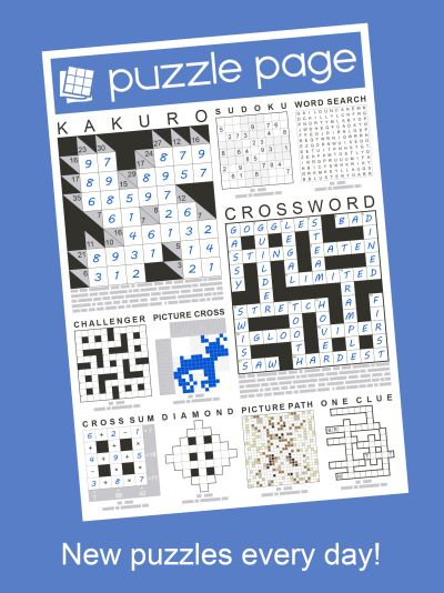 Puzzle Page Daily Answers Solutions Page 40 Of 61 Level Winner