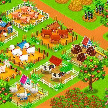 big farm life beginner's guide
