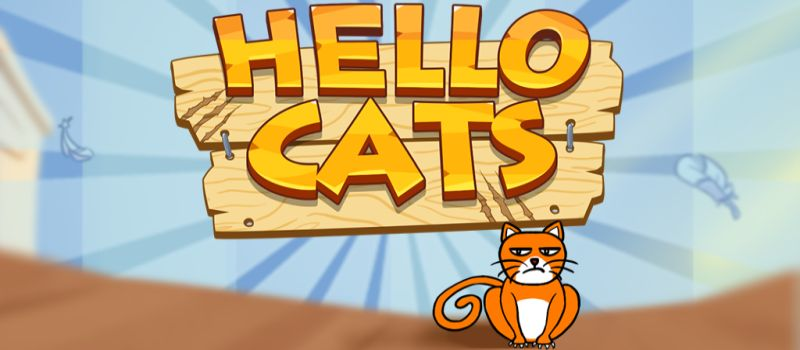hello cats tips