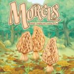 Mushroom Foraging Card Game 'Morels' Lands on iOS and Android on November 29
