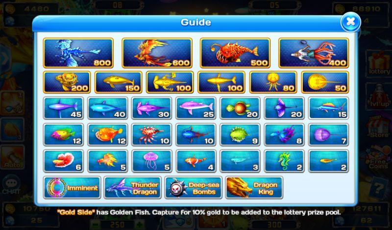 ocean fortune guide