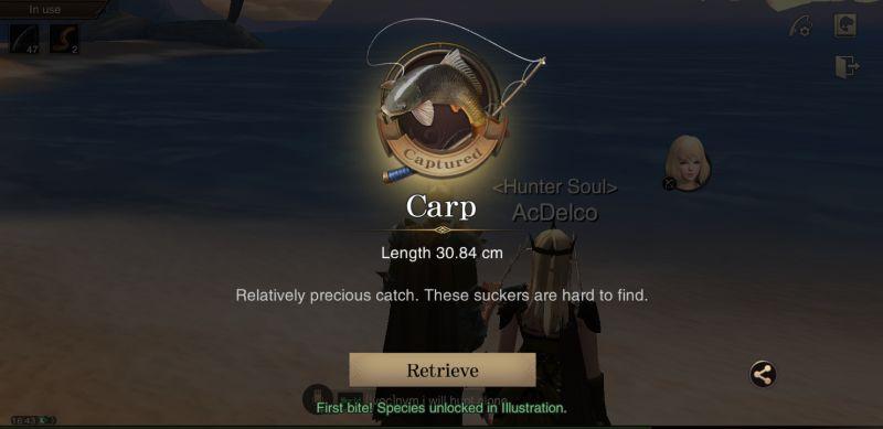 errant hunter's soul fishing