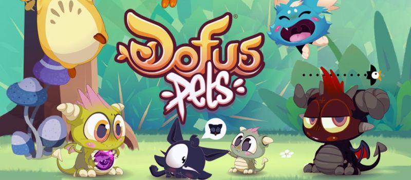 dofus pets guide