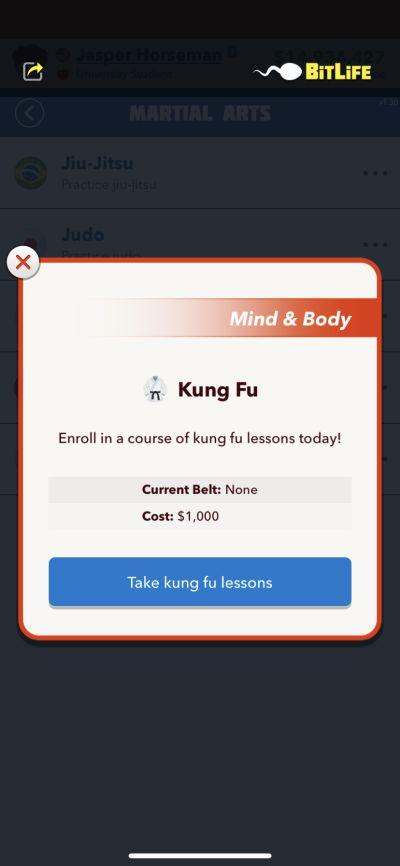 bitlife kung fu class