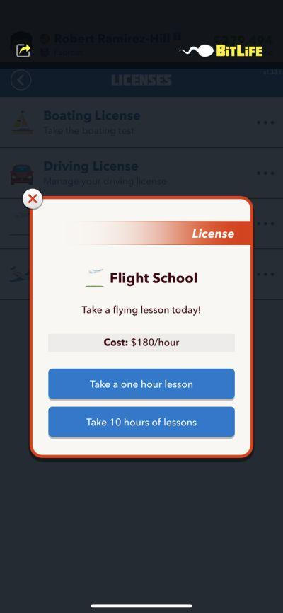 bitlife flight school