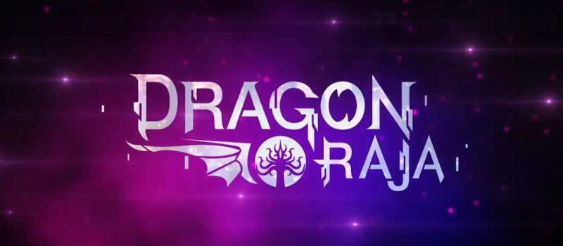 dragon raja best class