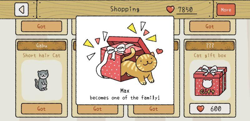 max adorable home