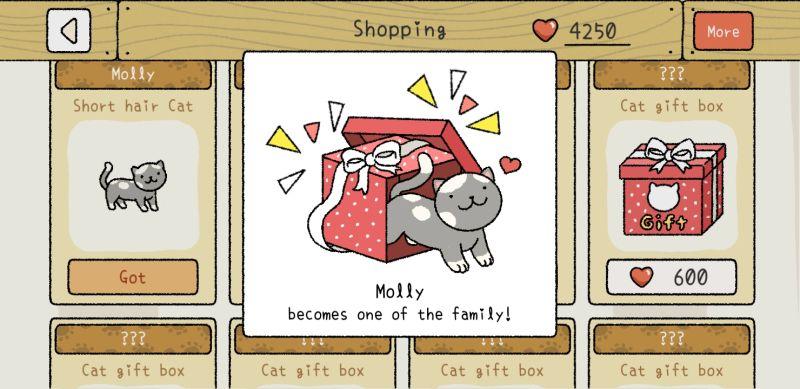 molly adorable home