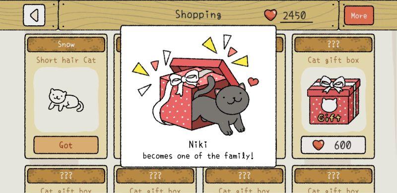 niki adorable home
