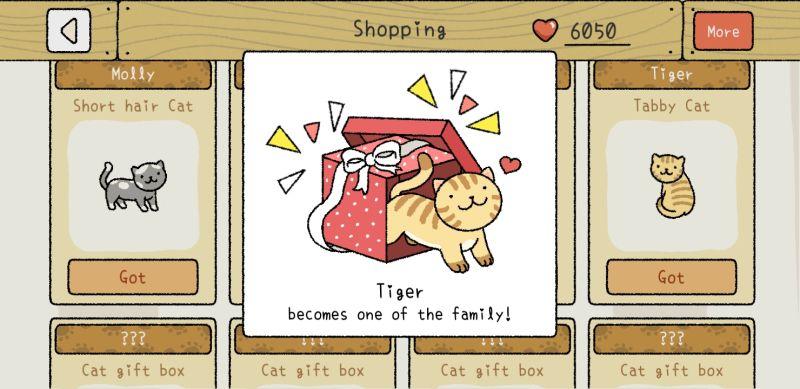 tiger adorable home
