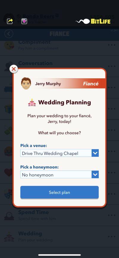 bitlife wedding planning