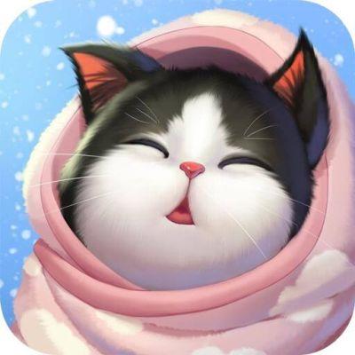 kitten match tips