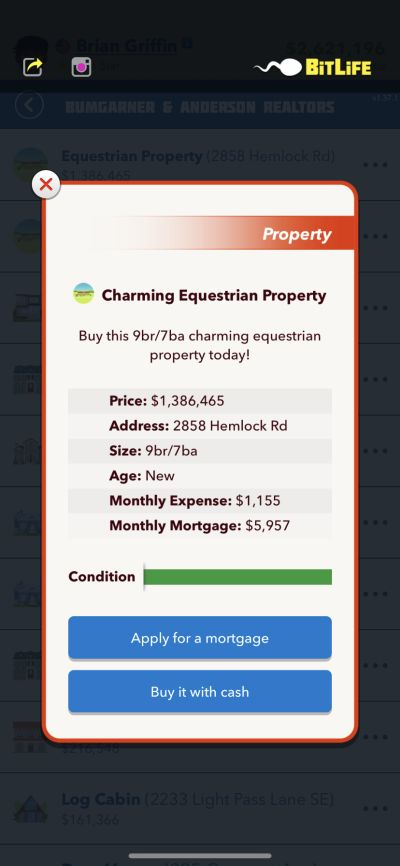 charming equestrian property in bitlife