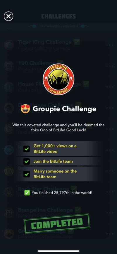 bitlife groupie challenge requirements