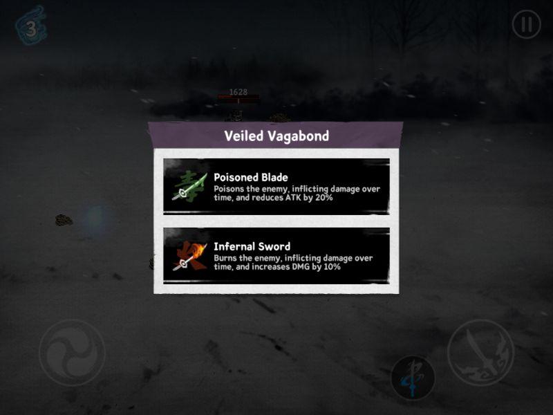 ronin the last samurai veiled vagabond