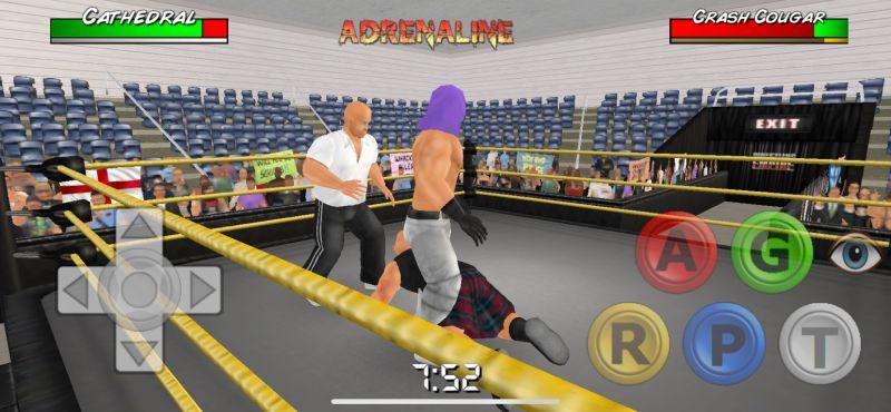 wrestling empire pinning opponent