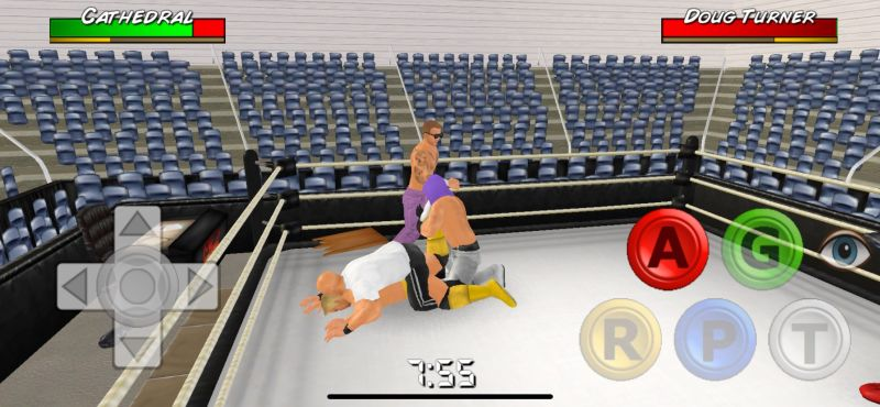 wrestling empire wearing the opponent out