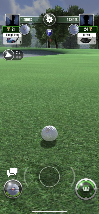 setting the pin in ultimate golf