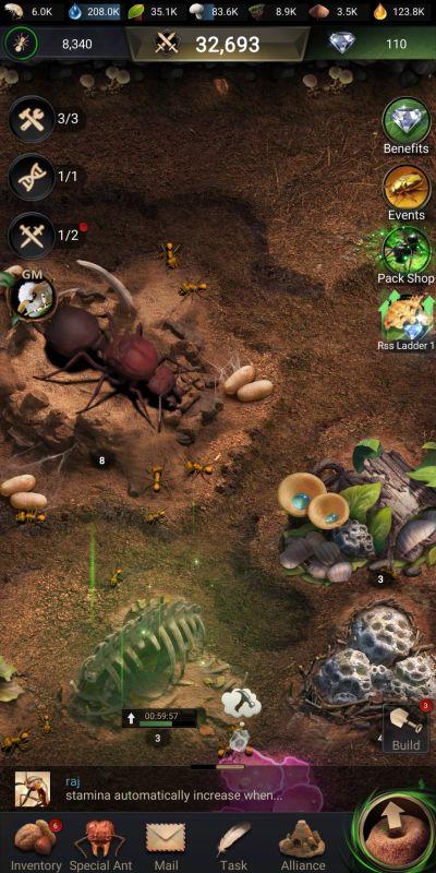multitasking in the ants underground kingdom