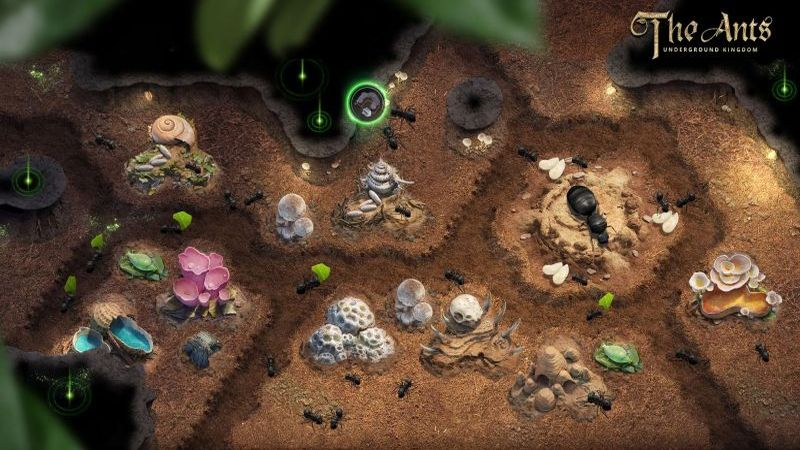 the ants underground kingdom tips