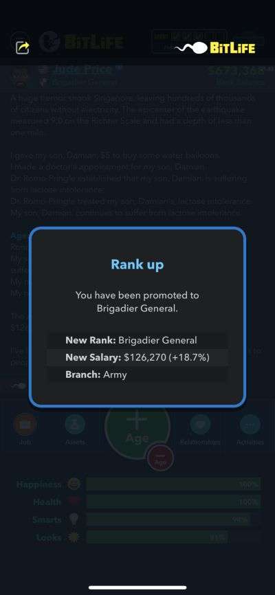 brigadier general rank in bitlife
