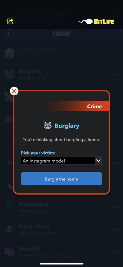 bitlife burglary