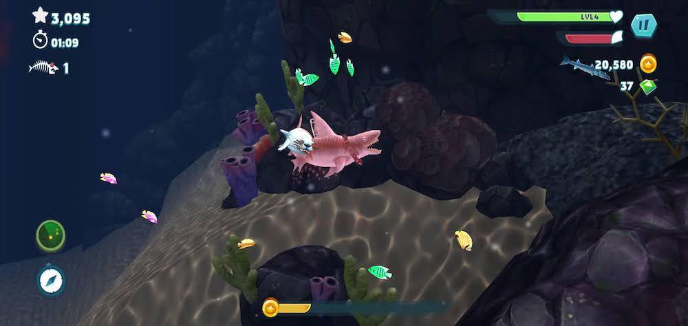 hungry shark evolution seal