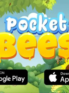 pocket bees guide
