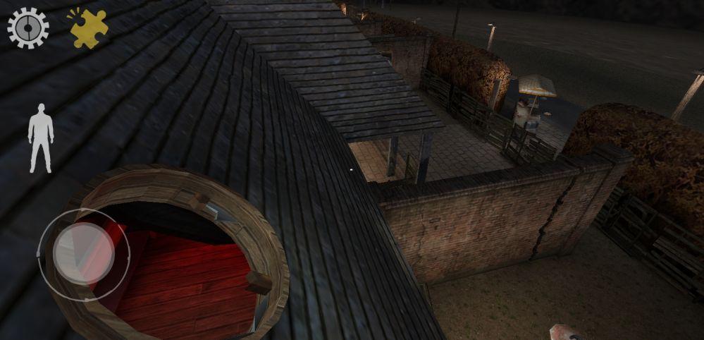 mr meat roof window