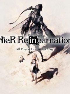 nier reincarnation guide